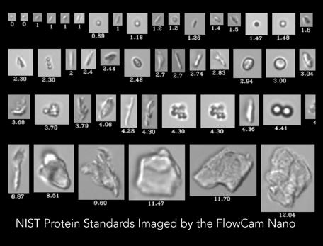 FlowCam ® : анализ частиц для биофармацевтических препаратов
